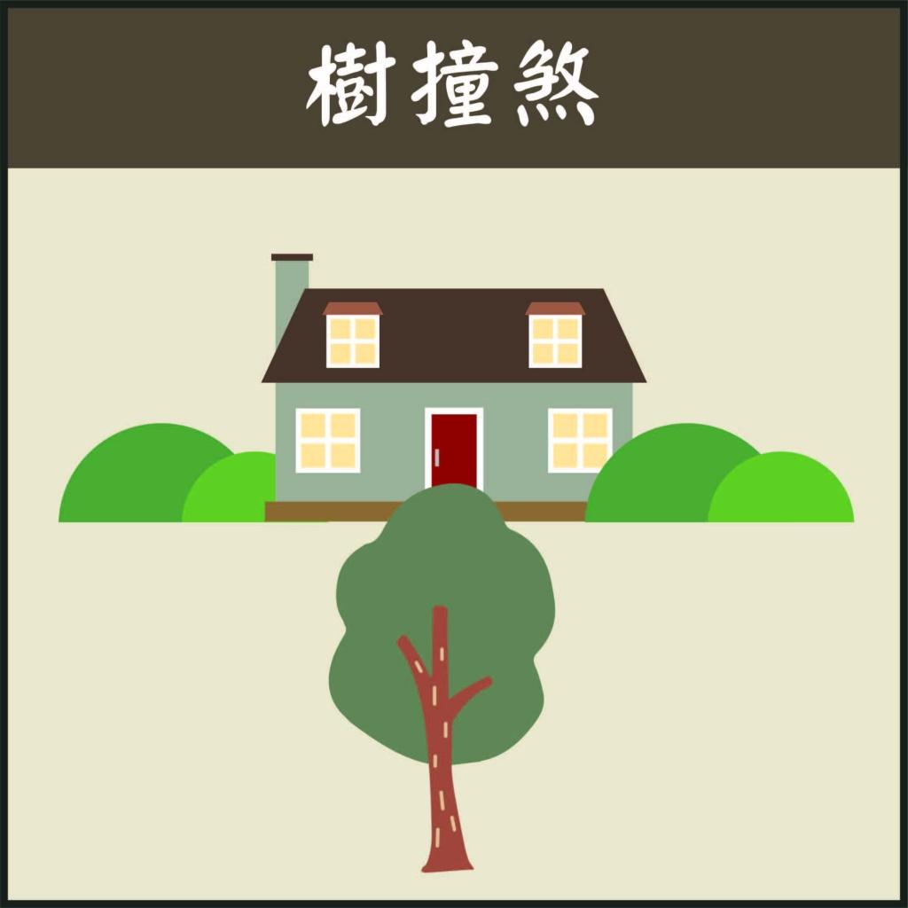 窗外有 樹風水,開門見 樹,樹 撞煞化解,庭院風水樹,房子後面有樹,風水樹黑松,風水樹有哪些,窗前有樹,風水樹種,風水煞